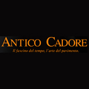 anticocadore